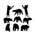 bear silhouettes vector image vector image