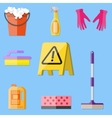 cleaning set in flat style vector image vector image