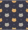 cute face cat seamless pattern vector image