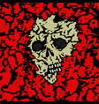 skull covered with ground vector image vector image