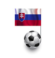 Soccer Balls or Footballs with flag of Slovakia vector image