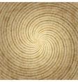 Stylish wood background vector image
