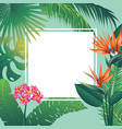 tropical leaves and flowers banner vector image