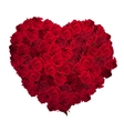 Valentines Day Heart Made of Red Roses EPS 10 vector image vector image