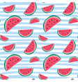 watermelon seamless pattern colorful summer vector image