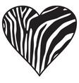 zebra heart wild animal skin print background vector image