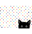 Black Cat Colorful Dots Star Background vector image vector image