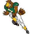 falcon sports football logo mascot vector image vector image