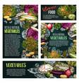 fresh vegetable and mushroom chalkboard banner vector image