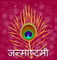 janmashtami indian fest dahi handi on vector image vector image