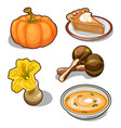 pumpkin set five elements on white background vector image vector image