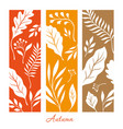 vertical banners with silhouette of autumn leaves vector image