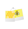 sweet and cute bee and honey vector image