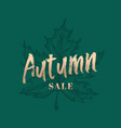 autumn sale abstract retro label sign or vector image