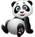 cartoon funny panda sitting on white background vector image vector image