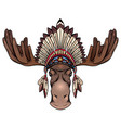 color a moose head with antlers vector image vector image