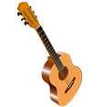 color image of acoustic guitar vector image vector image