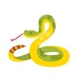 Gold python reticulated albino boa constrictor vector image vector image