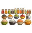 set different spices vector image