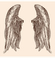 two wings an angel vector image