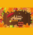 autumn sale background layout autun sale vector image vector image