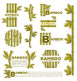 bamboo branch leaf icons template vector image