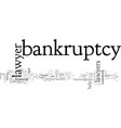 bankruptcy lawyer when to hire one vector image vector image