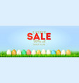 banner for easter sale colored easter eggs in vector image