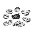black and white coffee beans vector image