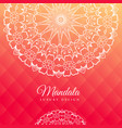 bright pink background with mandala art vector image