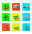 design of greenhouse and plant symbol set vector image