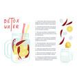 detox water vector image vector image