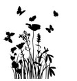 grass flowers and butterflies vector image vector image