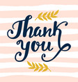 thank you handwritten lettering vector image vector image
