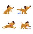 cute little dogs set vector image