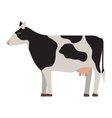 silhouette colorful cow with spots vector image