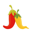 chili pepper ingredient food cinco de mayo mexican vector image