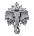 contour color native elephant head with trunk vector image vector image