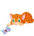 Kitten plays with the butterfly vector image vector image