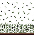 olive branch seamless border vector image vector image
