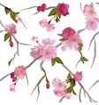 seamless background with sakura branch vector image vector image