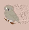 an owl stands in the nature vector image vector image