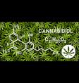 cannabidiol molecular structures on marijuana vector image vector image