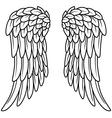 Cartoon angel wings vector image