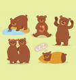 cartoon bear character teddy pose set wild vector image vector image
