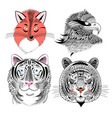 fox eagle and tiger vector image vector image