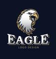 hawk eagle head usa americs logo mascot 13 vector image vector image