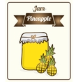 jam pineapple vector image