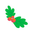 leaves berries colorful image vector image