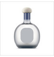 tequila bottle with blank label mexican drink vector image